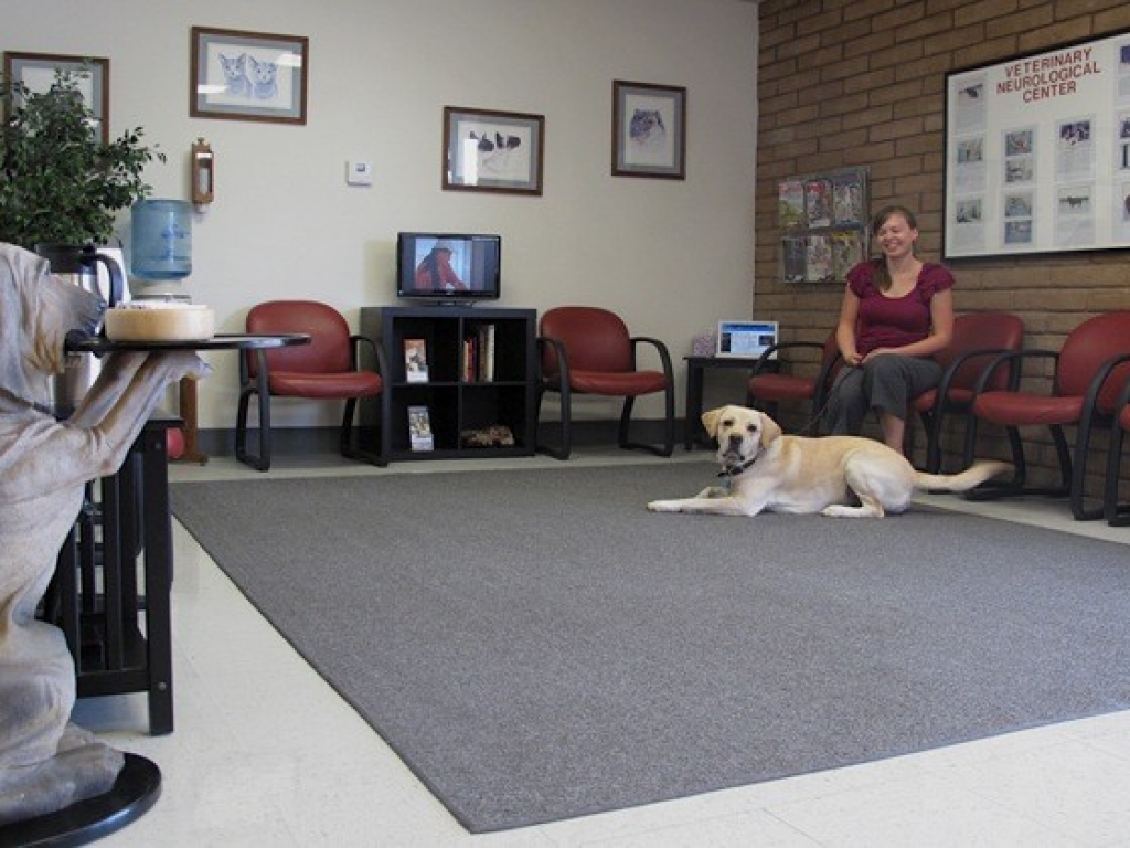 In the waiting area, the bloodhound, Sir Hawthorne I, provides coffee to clients prior to their meeting with the doctor.