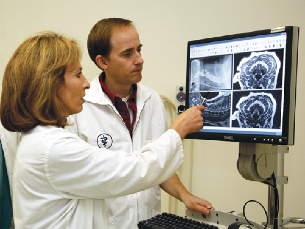 Dr. Kim Knowles (left) discusses image findings with Dr. Scott Plummer.